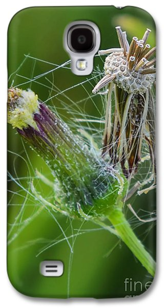 Flower Jewelry Galaxy S4 Cases - Simplicity of Continuity Galaxy S4 Case by Olga Hamilton