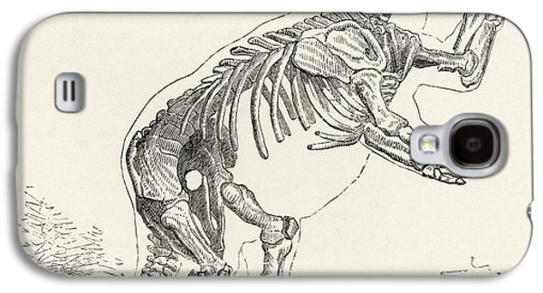Sloth Drawings Galaxy S4 Cases - Skeleton Of Mylodon Darwinii From The Galaxy S4 Case by Vintage Design Pics