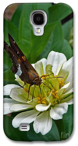 Flying Frog Galaxy S4 Cases - Skipper Two Galaxy S4 Case by Skip Willits