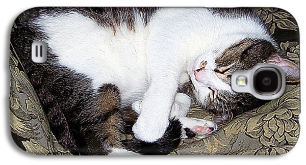 Digital Galaxy S4 Cases - Sleeping cat Galaxy S4 Case by Queso Espinosa