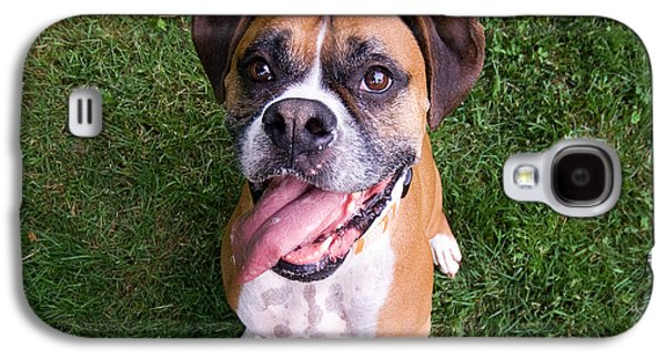 Boxer Galaxy S4 Cases - Smiling Boxer Dog Galaxy S4 Case by Stephanie McDowell