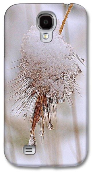 Beautiful Galaxy S4 Cases - Snow Transfiguration Galaxy S4 Case by Rona Black