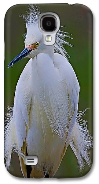 Snowy Egret Struts Galaxy S4 Case by William Jobes