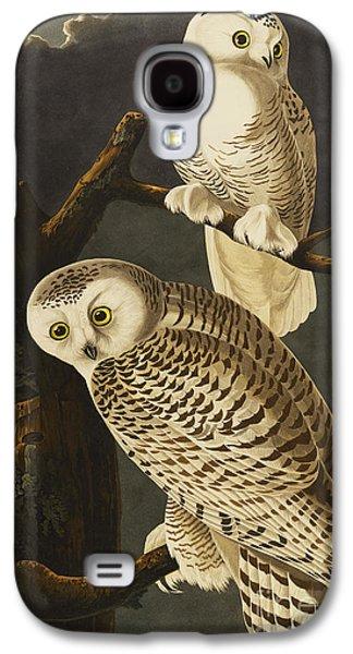 Pairs Galaxy S4 Cases - Snowy Owl Galaxy S4 Case by John James Audubon