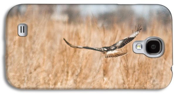 Preditor Galaxy S4 Cases - Soaring Hawk Over Field Galaxy S4 Case by Douglas Barnett