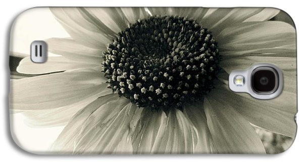 Pinks And Purple Petals Photographs Galaxy S4 Cases - Soft White Light Galaxy S4 Case by Trish Hale