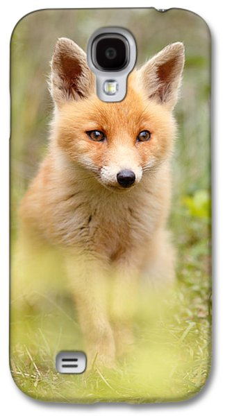 Fox Kit Galaxy S4 Cases - SoftFox Galaxy S4 Case by Roeselien Raimond