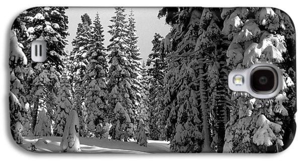 Snow Tree Prints Galaxy S4 Cases - Solitude Galaxy S4 Case by Kathy Yates