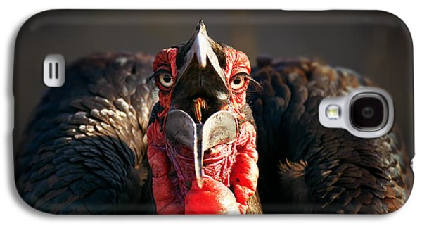 Camera Galaxy S4 Cases - Southern Ground Hornbill swallowing a seed Galaxy S4 Case by Johan Swanepoel