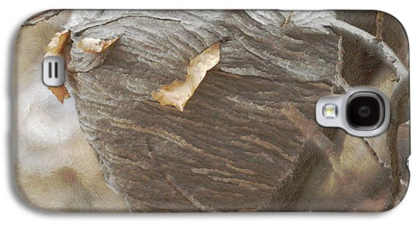 Special Home Galaxy S4 Case by Ernie Echols
