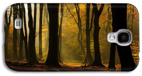 Autumn Trees Galaxy S4 Cases - Speulder Panorama Galaxy S4 Case by Martin Podt