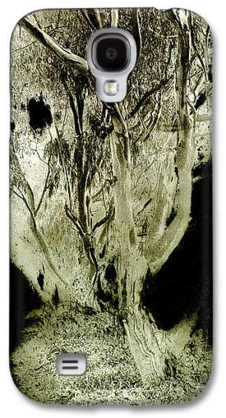 Duo Tone Galaxy S4 Cases - Spirit Tree Galaxy S4 Case by Paul W Faust -  Impressions of Light