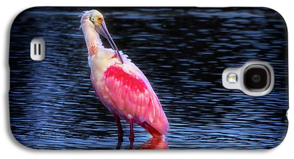 Spoonbill Sunset Galaxy S4 Case by Mark Andrew Thomas