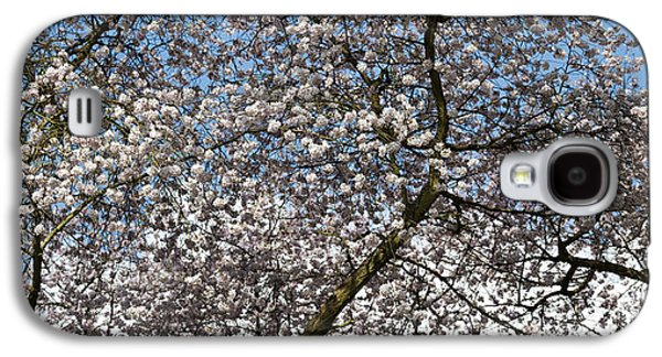 Rosaceae Galaxy S4 Cases - Spring Beauty Galaxy S4 Case by Tim Gainey