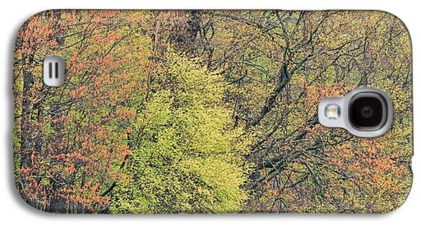 Spring Forest Mud Lake Galaxy S4 Case by Dean Pennala
