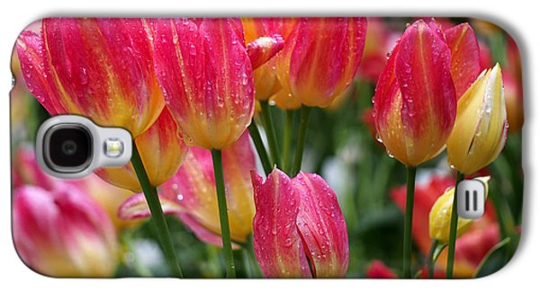 Spring Tulips In The Rain Galaxy S4 Case by Rona Black