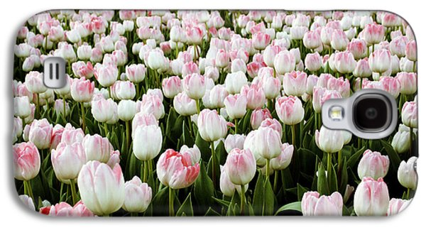 Photo Art Gallery Galaxy S4 Cases - Spring Tulips Galaxy S4 Case by Linda Woods