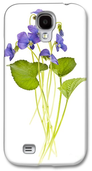 Violet Galaxy S4 Cases - Spring violets on white Galaxy S4 Case by Elena Elisseeva
