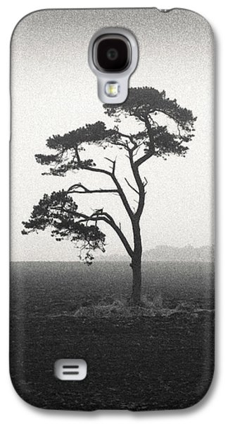 St Cyrus Tree Galaxy S4 Case by Dave Bowman