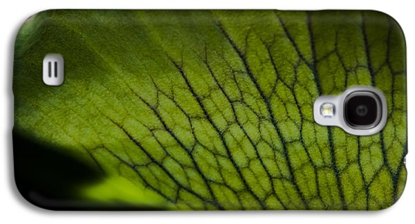 Black Mamba Galaxy S4 Cases - Staghorn Galaxy S4 Case by Rich Governali