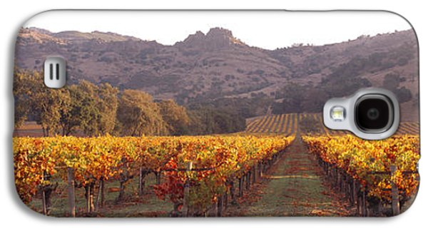 Stags Leap Wine Cellars Napa Galaxy S4 Case by Panoramic Images