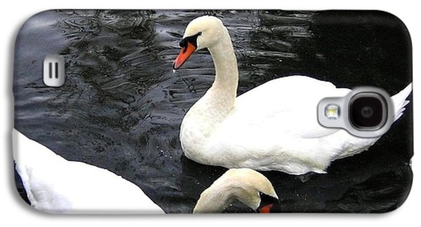 Swan Pair Galaxy S4 Cases - Stanley Park Swans Galaxy S4 Case by Will Borden
