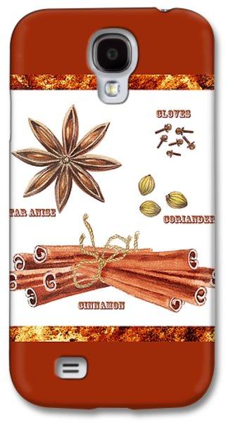 Star Anise Cloves Coriander Cinnamon Galaxy S4 Case by Irina Sztukowski