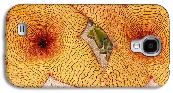 Abstracts Galaxy S4 Cases - Star Cactus Flower Galaxy S4 Case by Deborah Benoit