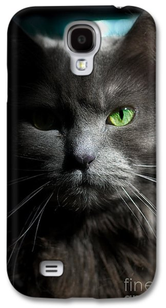 Personalities Photographs Galaxy S4 Cases - Stare Down Galaxy S4 Case by Joann Vitali