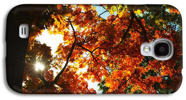 Abstract Digital Photographs Galaxy S4 Cases - Stars in autumn Galaxy S4 Case by SK Pfphotography