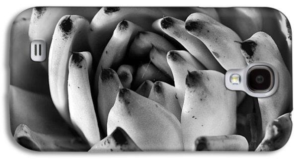 Kelley King Galaxy S4 Cases - Succulent Petals Black and White Galaxy S4 Case by Kelley King