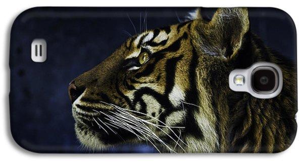 Sumatran Tiger Profile Galaxy S4 Case by Avalon Fine Art Photography