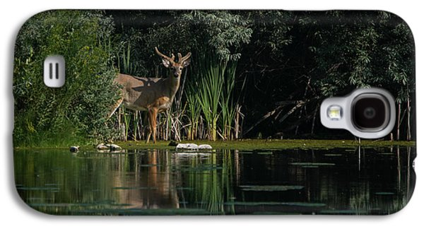 Landscapes Photographs Galaxy S4 Cases - Summer Morning Walk Galaxy S4 Case by Ernie Echols