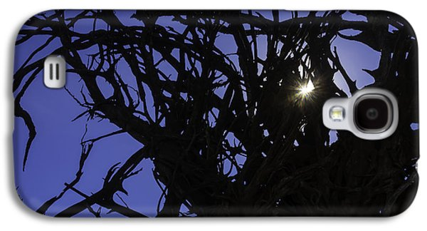Sun Through Tree Roots Galaxy S4 Case by Garry Gay