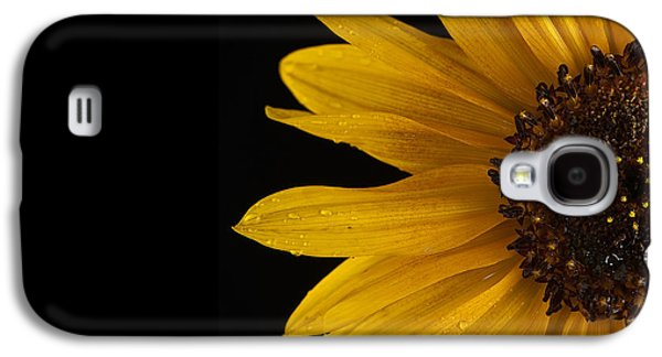 Best Sellers -  - Studio Photographs Galaxy S4 Cases - Sunflower Number 3 Galaxy S4 Case by Steve Gadomski