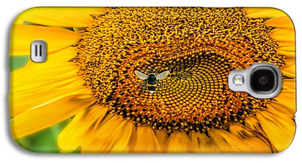 Sunflower Patch Galaxy S4 Cases - Sunflower Patch Galaxy S4 Case by Pat Cook