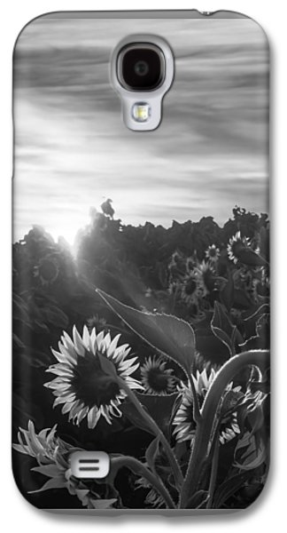 Sun Galaxy S4 Cases - Sunflower Rise in Black and White Galaxy S4 Case by Wes Jimerson