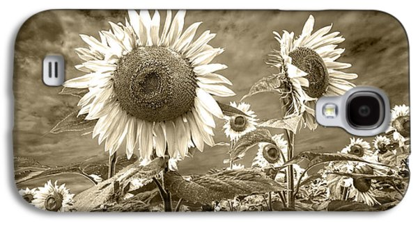 Selenium Galaxy S4 Cases - Sunflowers in Sepia Blooming in a Field Galaxy S4 Case by Randall Nyhof