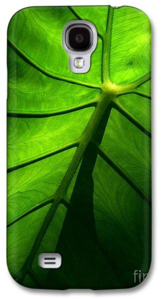 Sunglow Green Leaf Galaxy S4 Case by Patricia L Davidson