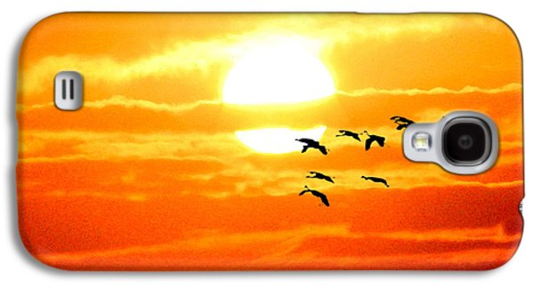 Waterscape Mixed Media Galaxy S4 Cases - Sunrise / sunset / Sandhill Cranes Galaxy S4 Case by W Gilroy