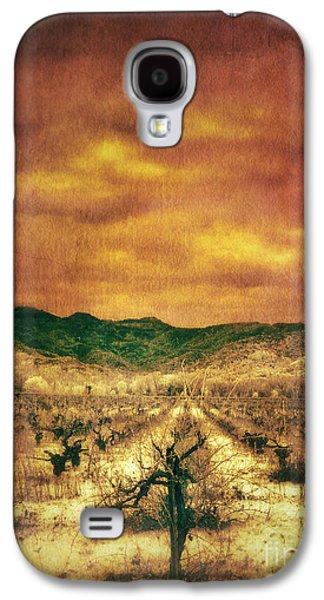 Vineyard In Napa Galaxy S4 Cases - Sunset Over Vineyard Galaxy S4 Case by Jill Battaglia