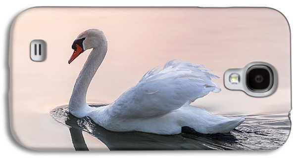 Swans... Galaxy S4 Cases - Sunset swan Galaxy S4 Case by Elena Elisseeva