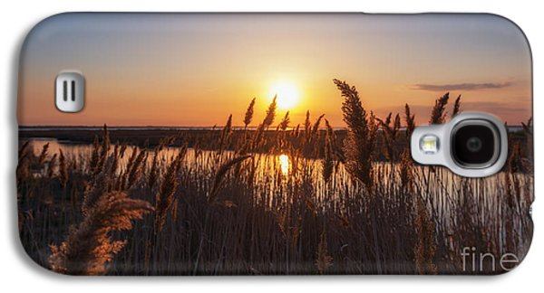 Sun Galaxy S4 Cases - Sunset through the wheat  Galaxy S4 Case by Michael Ver Sprill