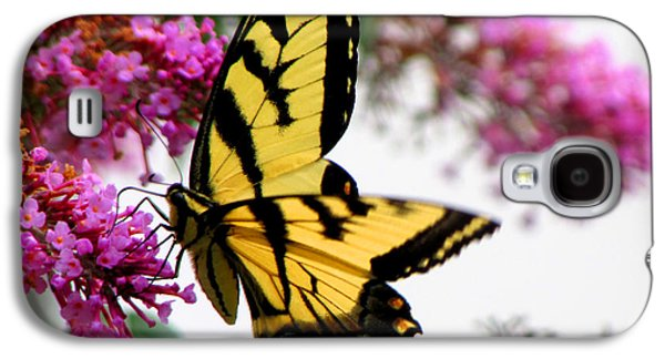 Original Art Photographs Galaxy S4 Cases - Swallowtail Beauty Galaxy S4 Case by Gardening Perfection