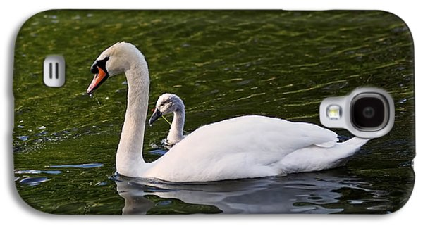 Swan Mother With Cygnet Galaxy S4 Case by Rona Black