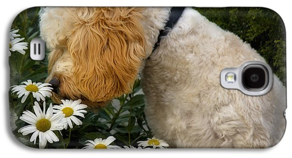 Recently Sold -  - Puppy Digital Galaxy S4 Cases - Taking Time To Smell The Flowers Galaxy S4 Case by Susan Candelario