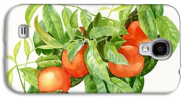 Tangerines With Leaves Galaxy S4 Case by Sharon Freeman