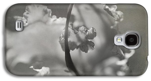 Macro Digital Galaxy S4 Cases - Tenderness Galaxy S4 Case by Laurie Search