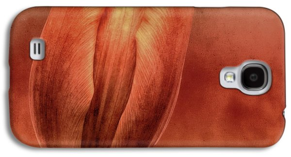 Contemporary Abstract Photographs Galaxy S4 Cases - Terracotta Galaxy S4 Case by Wim Lanclus