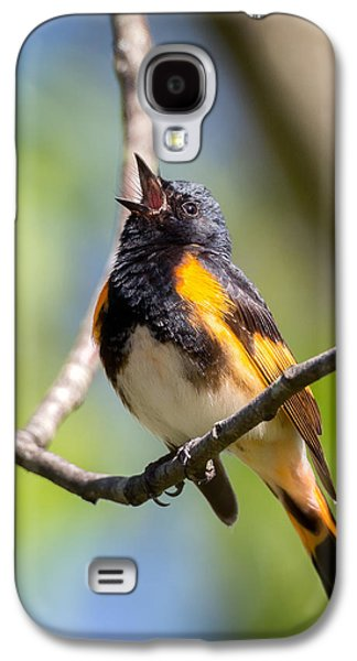 Green Galaxy S4 Cases - The American Redstart Galaxy S4 Case by Bill Wakeley